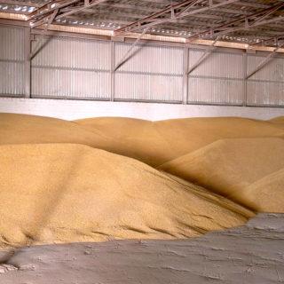 stock de céréales